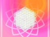 flower-of-life-essence-of-life-structured-water-perl-cube1