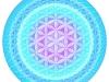 blume-des-lebens-sphere-2-aqua0