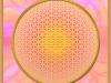 blume-des-lebens-sphere-2-perl