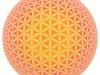 blume-des-lebens-sphere-2-perl2