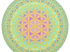blume-des-lebenssphere-2
