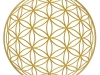 flower-of-life-osiris-sphere-gold