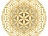 flower-of-life-osiristempel-2-gold-perl