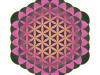 flower-of-metatron-orient