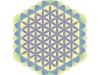 flower-of-metatron-pastell