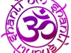 aum-om-shanti-purple-rose