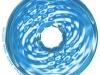 venusblume-torus-aquarius-spiral-vortex